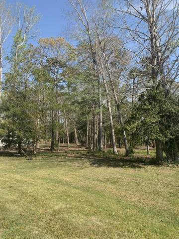 332 Osprey Point Drive, Sneads Ferry, NC 28460 (MLS #100265735) :: The Keith Beatty Team