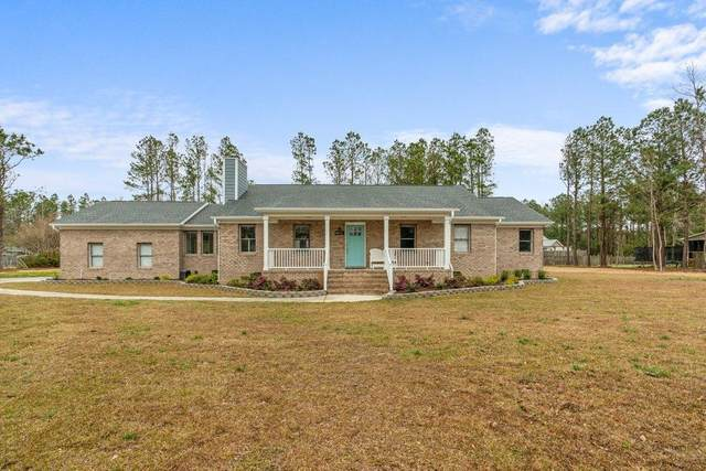 210 Sand Dollar Lane, Hampstead, NC 28443 (MLS #100265831) :: Frost Real Estate Team