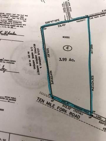 Lot 4 Sr 1002/Ten Mile Fork Road, Trenton, NC 28585 (MLS #100265978) :: David Cummings Real Estate Team