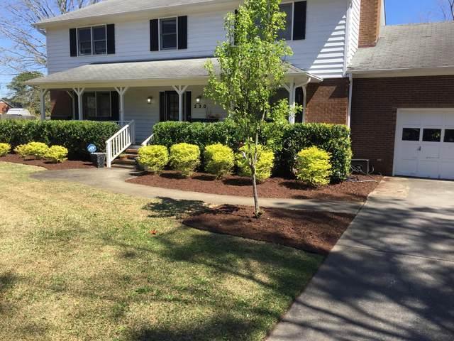 230 Greenwich Lane, Wilmington, NC 28409 (MLS #100266155) :: Coldwell Banker Sea Coast Advantage