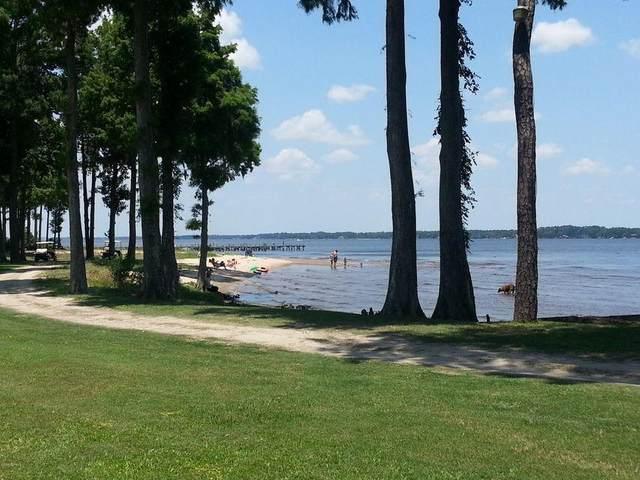 702 Hollis Drive, Blounts Creek, NC 27814 (MLS #100266897) :: The Oceanaire Realty