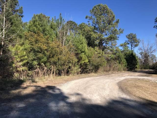 1686 Mallard Run Drive SW, Supply, NC 28462 (MLS #100267464) :: The Keith Beatty Team