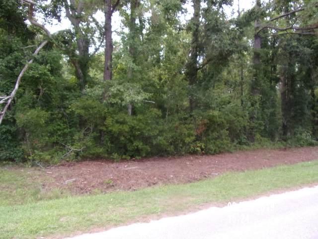 117 Deer Trail, Beaufort, NC 28516 (MLS #100269433) :: David Cummings Real Estate Team
