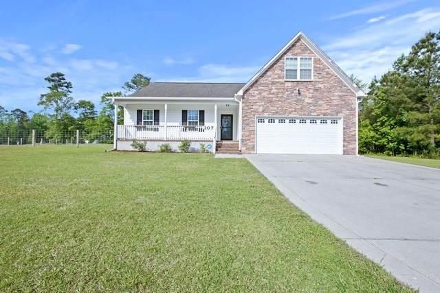 307 Sky Blue Lane, Jacksonville, NC 28540 (MLS #100270493) :: RE/MAX Elite Realty Group