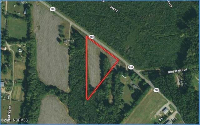 0 Highway 903, Littleton, NC 27850 (MLS #100270700) :: CENTURY 21 Sweyer & Associates
