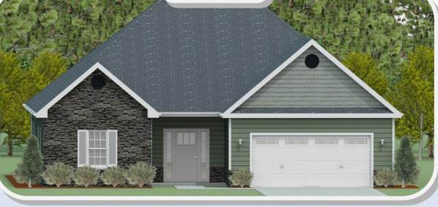 813 Habersham Avenue, Rocky Point, NC 28457 (MLS #100271114) :: Great Moves Realty
