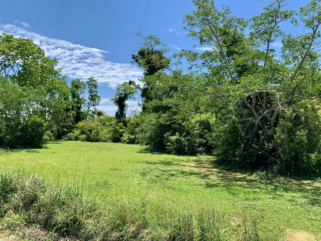 133 Alfred Drive, Gloucester, NC 28528 (MLS #100271405) :: Castro Real Estate Team