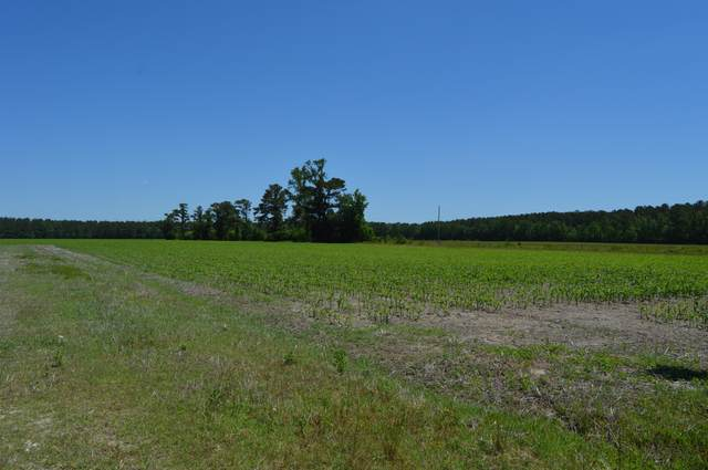 Lot 2r Piney Woods Road, Burgaw, NC 28425 (MLS #100271546) :: Great Moves Realty
