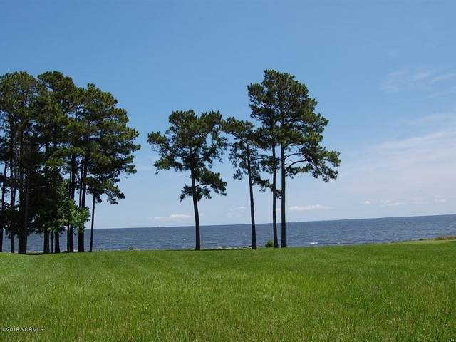 6052 Dolphin Road, Oriental, NC 28571 (MLS #100273007) :: Lynda Haraway Group Real Estate