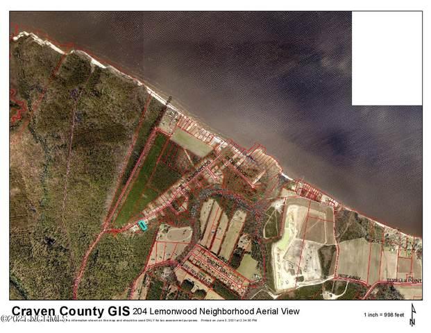 204 Lemonwood Drive, Havelock, NC 28532 (MLS #100274704) :: The Oceanaire Realty