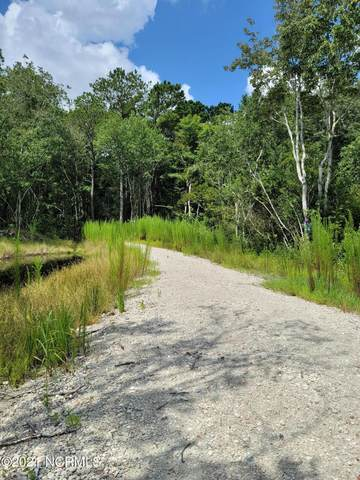 221 Dunn Road Tract 1A Lot 1B, Sneads Ferry, NC 28460 (#100281482) :: Rachel Kendall Team