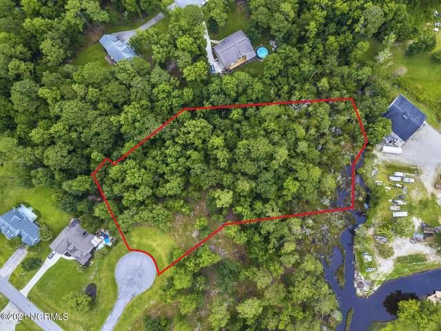 200 Creek View Circle, Sneads Ferry, NC 28460 (MLS #100282832) :: David Cummings Real Estate Team
