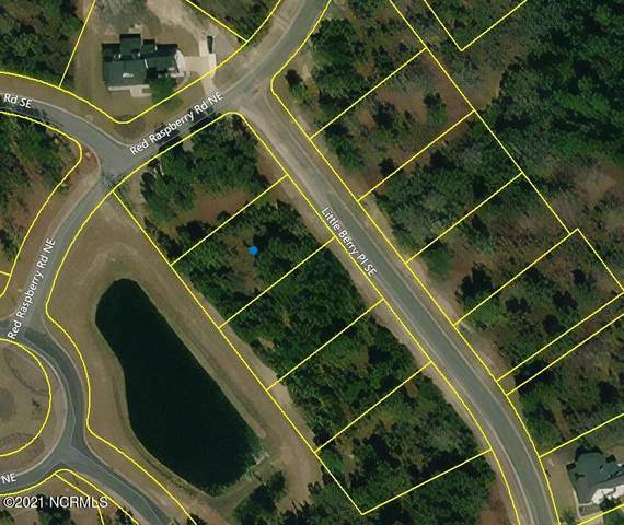 3705 Little Berry Place NE, Leland, NC 28451 (MLS #100283603) :: The Cheek Team