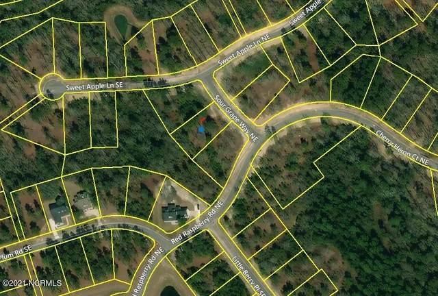 3695 Sour Grape Way NE, Leland, NC 28451 (MLS #100283864) :: Lynda Haraway Group Real Estate