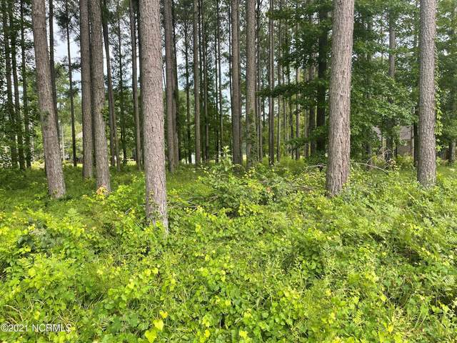 151 Cypress Landing Trail, Chocowinity, NC 27817 (MLS #100284128) :: Berkshire Hathaway HomeServices Prime Properties