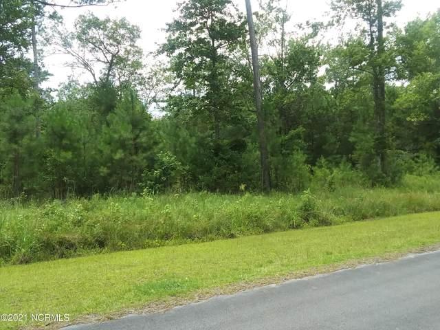 47 Timber Point Drive, Merritt, NC 28556 (MLS #100285363) :: Berkshire Hathaway HomeServices Prime Properties