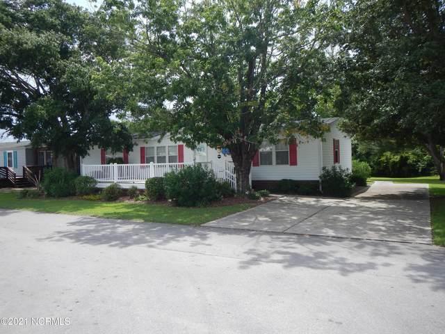 423 Blue Goose Lane, Newport, NC 28570 (MLS #100286731) :: The Oceanaire Realty