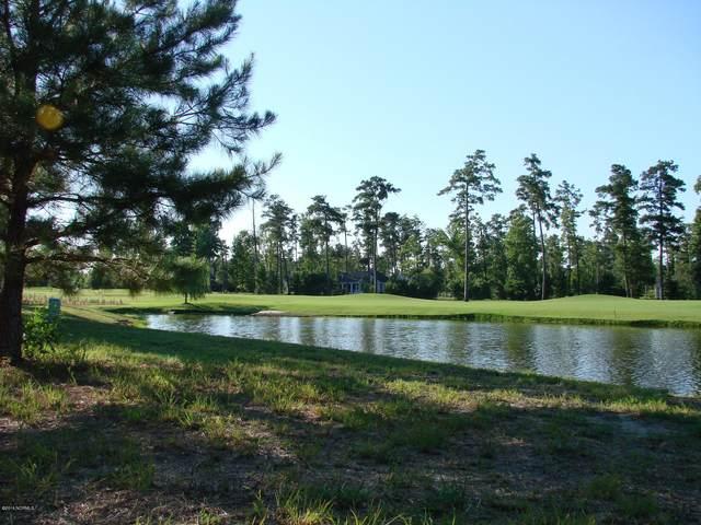 259 Red Fox Run Drive, Wallace, NC 28466 (MLS #100290160) :: David Cummings Real Estate Team