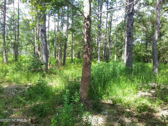 39 Cross Creek Drive, Hampstead, NC 28443 (MLS #100292389) :: Holland Shepard Group