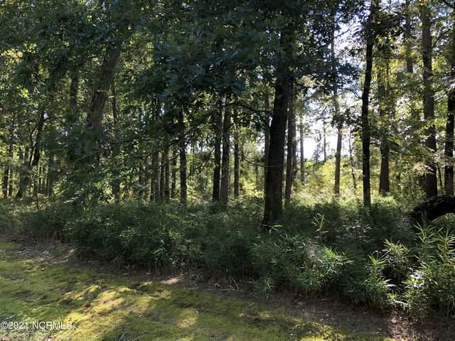 24 North Creek Drive, Belhaven, NC 27810 (MLS #100293854) :: Frost Real Estate Team