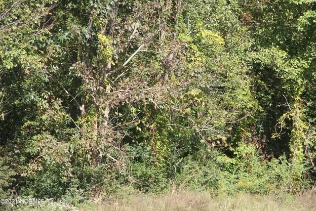 1 Shelter Creek, Burgaw, NC 28425 (MLS #100295520) :: Vance Young and Associates