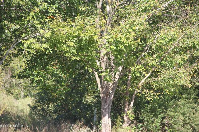 1 Shelter Creek Drive, Burgaw, NC 28425 (MLS #100295527) :: Thirty 4 North Properties Group