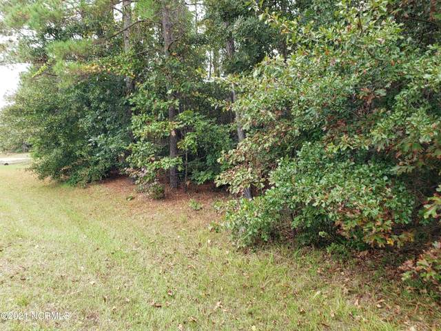 172 Raynor Sands Drive, Dunn, NC 28334 (MLS #100295615) :: Thirty 4 North Properties Group