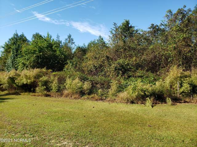 5 Basstown Road, Clinton, NC 28328 (MLS #100295992) :: Great Moves Realty