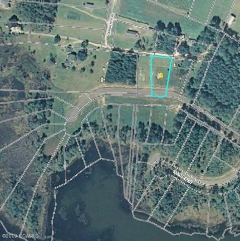 314 Anson Road, Beaufort, NC 28516 (MLS #10802663) :: Century 21 Sweyer & Associates