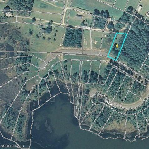 310 Anson Road, Beaufort, NC 28516 (MLS #10802666) :: Century 21 Sweyer & Associates