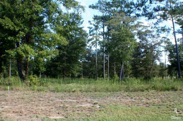 529 N Wild Rice Drive SW, Supply, NC 28462 (MLS #20696667) :: Berkshire Hathaway HomeServices Prime Properties