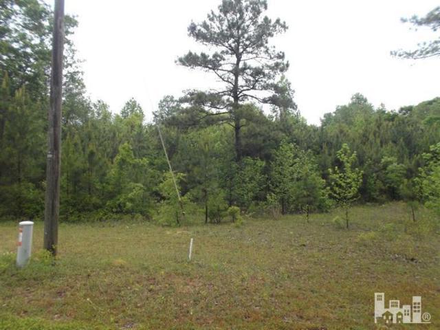 42 River Birch Road, Burgaw, NC 28425 (MLS #30521707) :: Century 21 Sweyer & Associates