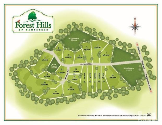 256 Orchard Mill Road, Hampstead, NC 28443 (MLS #30521763) :: Century 21 Sweyer & Associates