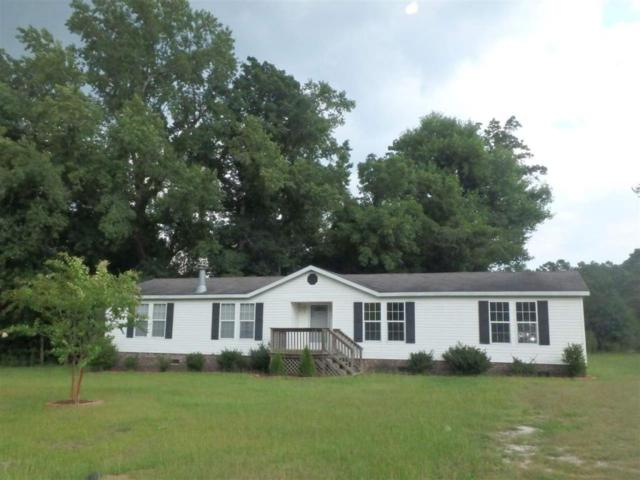 114 Limestone Creek Road, Beulaville, NC 28518 (MLS #80169505) :: Century 21 Sweyer & Associates