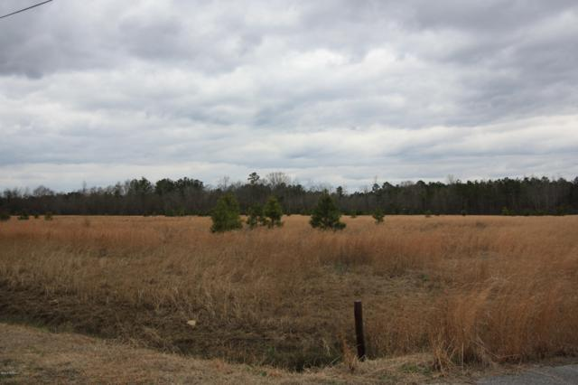 Lot 60 Old Tower Road, Lumberton, NC 28360 (MLS #100003679) :: Donna & Team New Bern