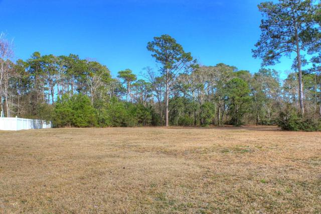 107 Buena Vista Drive, Newport, NC 28570 (MLS #100005297) :: The Keith Beatty Team