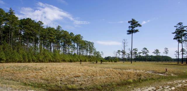 422 Madewood Lane, Newport, NC 28570 (MLS #100005915) :: The Chris Luther Team