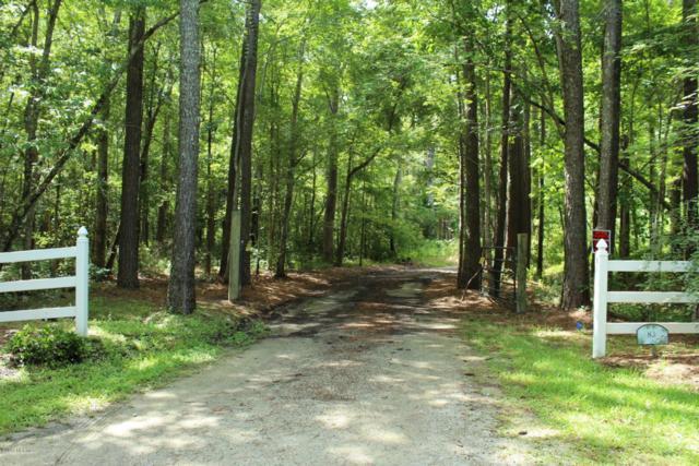 100 Canvasback Drive, Maribel, NC 28515 (MLS #100023863) :: Courtney Carter Homes