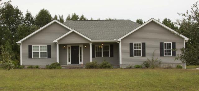 529 Park Meadows Drive, Newport, NC 28570 (MLS #100033019) :: Century 21 Sweyer & Associates