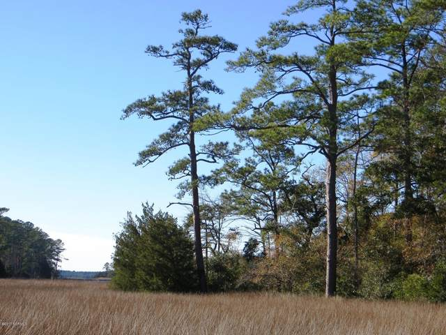 139 Cummins Creek Road, Beaufort, NC 28516 (#100041766) :: Rachel Kendall Team