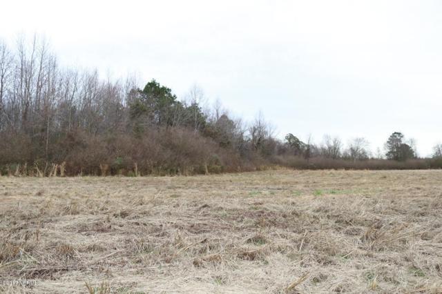 247 Deer Haven Drive, Richlands, NC 28574 (MLS #100044009) :: Century 21 Sweyer & Associates