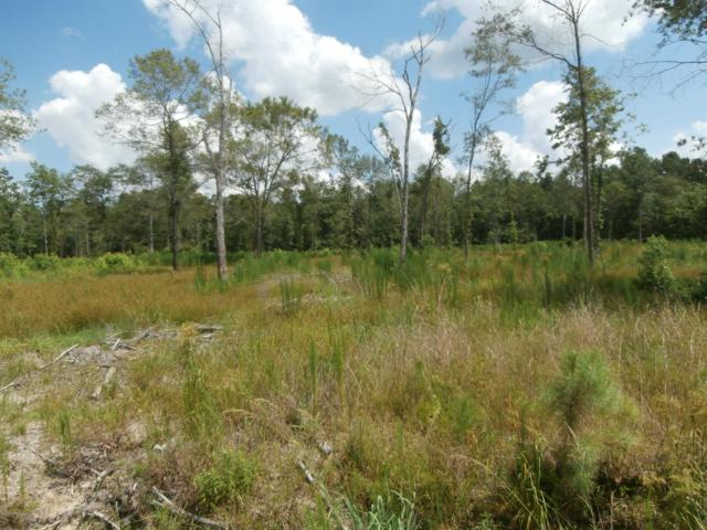Lot #17 Buschs Avenue, Watha, NC 28471 (MLS #100045105) :: The Bob Williams Team