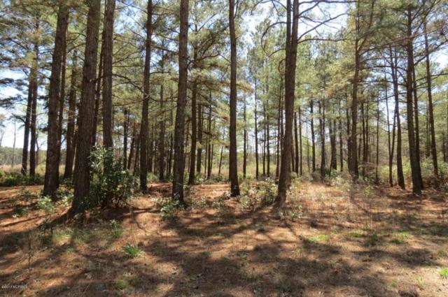 Lot 24 Waterway Landing Drive E, Belhaven, NC 27810 (MLS #100052946) :: Century 21 Sweyer & Associates
