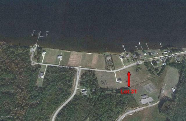 31 Eagle View Lane, Blounts Creek, NC 27814 (MLS #100054795) :: Century 21 Sweyer & Associates