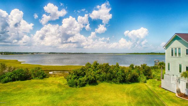 186 Big Hammock Point Road, Sneads Ferry, NC 28460 (MLS #100055338) :: The Keith Beatty Team