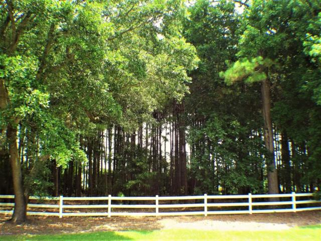 149 Bell Farm Lane, Hampstead, NC 28443 (MLS #100055766) :: Century 21 Sweyer & Associates