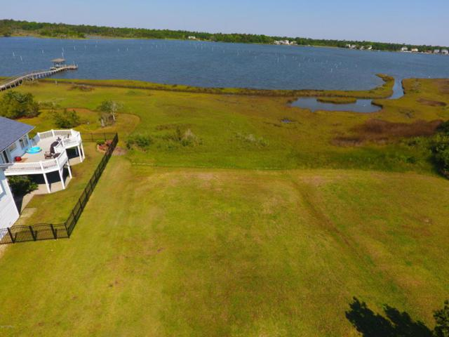 157 Big Hammock Point Road, Sneads Ferry, NC 28460 (MLS #100058700) :: Century 21 Sweyer & Associates