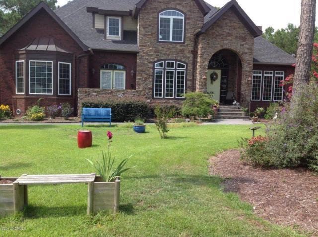 104 Killdeer Drive, Hampstead, NC 28443 (MLS #100060098) :: Century 21 Sweyer & Associates