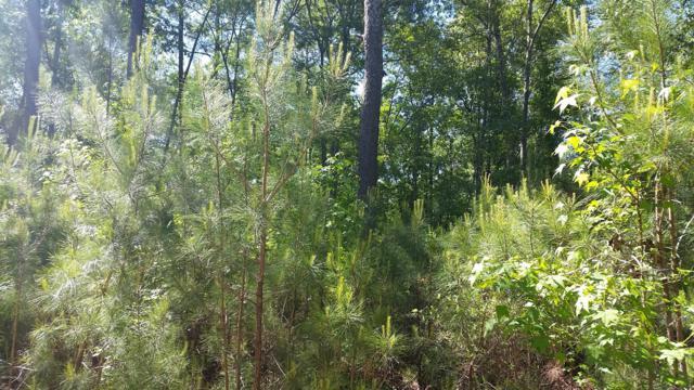 7861 Crystal Lake Drive NE, Leland, NC 28451 (MLS #100061795) :: Lynda Haraway Group Real Estate