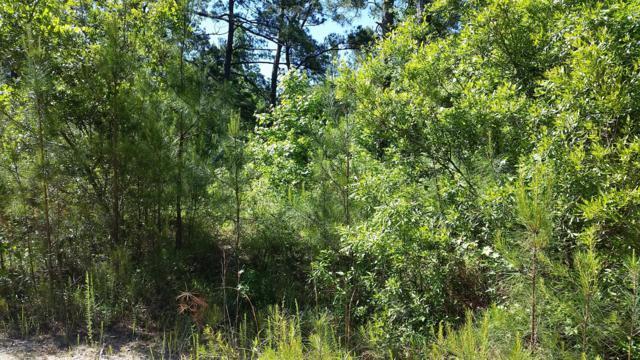 7849 Crystal Lake Drive NE, Leland, NC 28451 (MLS #100063808) :: Lynda Haraway Group Real Estate